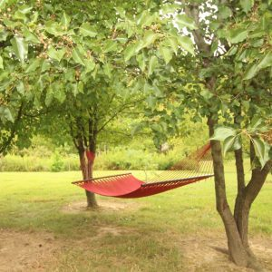 hocking-hills-cabin-rentals-hammock-sky-view-at-boulders-edge-1